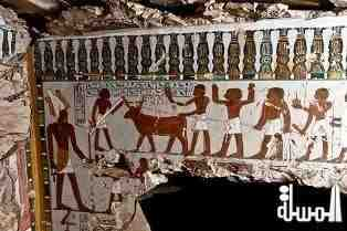 Amazing Discovery in Luxor