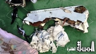 Investigation Progress Report (1) by the Egyptian Aircraft Accident Investigation Committee