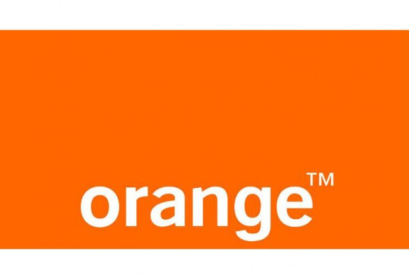 Orange Egypt shareholders have approved Orange Egypt July 31, 2017 interim accounts