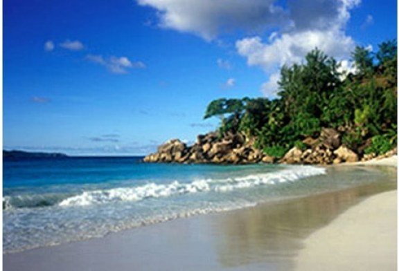 Seychellois moving to save Seychelles