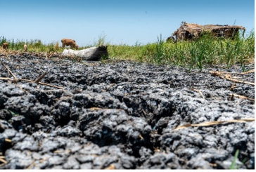 Time for urgent action and funds to make water central to African climate policies